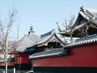 黒田官兵衛が礎を築いた中津城下街めぐり