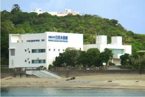 京都大学 白浜水族館