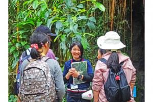 参加無料!毎日開催!植物の新たな魅力を発見できるフラワーツアー