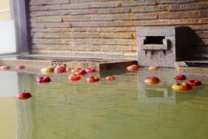 源泉かけ流し豊野温泉 りんごの湯