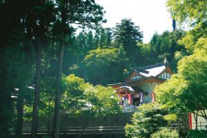 讃岐山脈の山頂近くにある雲辺寺の本堂