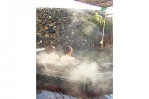 天然の湯 ながおか温泉